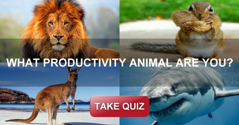 Productivity Animal_Quiz